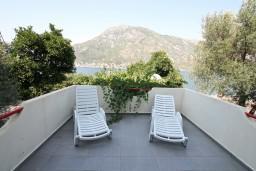 Терраса. Боко-Которская бухта, Черногория, Столив : Студия с балконом с видом на залив, возле пляжа