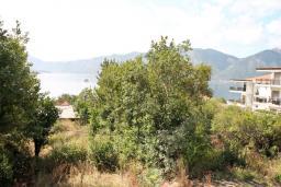 Вид на море. Боко-Которская бухта, Черногория, Ораховац : Апартамент с отдельной спальней, с балконом с видом на море, 80 метров до пляжа
