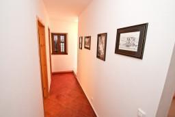 Боко-Которская бухта, Черногория, Рисан : Двухуровневый апартамент для 3-5 человек, с отдельной спальней, с 2-мя ванными комнатами, 80 метров до моря
