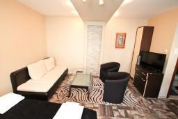 Студия (гостиная+кухня). Боко-Которская бухта, Черногория, Муо : Современная студия для 2-3 человек, 20 метров до пляжа