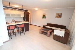Гостиная. Боко-Которская бухта, Черногория, Доброта : Современный апартамент с отдельной спальней, с террасой с видом на море