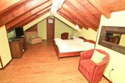 Студия (гостиная+кухня). Боко-Которская бухта, Черногория, Котор : Студия для 2-3 человек, 50 метров до моря