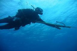 Подводная охота : Бечичи, Черногория