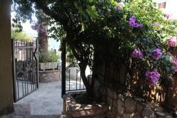 Терраса. Бечичи, Черногория, Рафаиловичи : Апартамент №18 с отдельной спальней и террасой (АРР 04/garden)