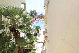 Вид на море. Будванская ривьера, Черногория, Святой Стефан : Апартамент для 2-3 человек, с отдельной спальней, с балконом с видом на море