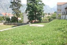Территория. Боко-Которская бухта, Черногория, Столив : Трехэтажный каменный дом в 20 метрах от пляжа, с большой гостиной-столовой, с двумя кухнями, с шестью отдельными спальнями и ванными комнатами, с сауной, с большой зеленой территорией