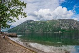 Ближайший пляж. Боко-Которская бухта, Черногория, Столив : Трехэтажный каменный дом в 20 метрах от пляжа, с большой гостиной-столовой, с двумя кухнями, с шестью отдельными спальнями и ванными комнатами, с сауной, с большой зеленой территорией
