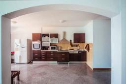 Кухня. Будванская ривьера, Черногория, Будва : Апартамент с гостиной, двумя спальнями, двумя ванными комнатами, 4 балкона с шикарным видом на море