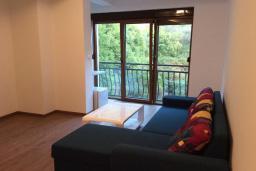 Студия (гостиная+кухня). Рафаиловичи, Черногория, Рафаиловичи : Студия в 150 метрах от пляжа, с кондиционером и плазменным телевизором