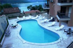 Бассейн. Боко-Которская бухта, Черногория, Доброта : Апартамент в 50 метрах от пляжа, большая гостиная, две спальни, балкон с видом на море