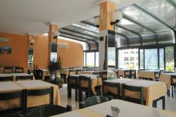 Кафе-ресторан. Danica 3* в Петроваце