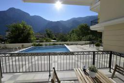 Терраса. Боко-Которская бухта, Черногория, Котор : Апартамент в 20 метрах от пляжа, с гостиной, отдельной спальней и террасой