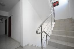 Лестница наверх. Plavi Biser 3* в Рафаиловичах