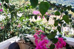 Балкон. Будванская ривьера, Черногория, Бечичи : Студия в Бечичи с балконом