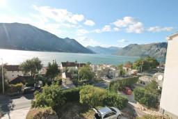 Вид. Боко-Которская бухта, Черногория, Доброта : Апартаменты с отдельной спальней, с террасой с шикарным видом на море, 30 метров от пляжа