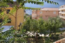 Территория. Боко-Которская бухта, Черногория, Доброта : Апартамент в Доброте на первом этаже в 50 метрах от моря
