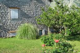 Территория. Боко-Которская бухта, Черногория, Доброта : 2-х этажный дом для 6-7 человек, с 3-мя  отдельными спальнями, с зеленым садом, 50 метров от моря