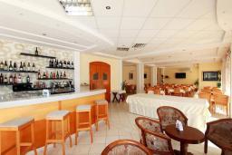 Кафе-ресторан. Magnolija 3* в Бечичи