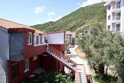 Территория. Бечичи, Черногория, Бечичи : Студия в Бечичи в 300 метрах от моря