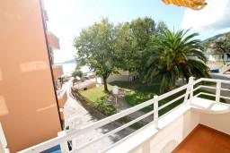Вид на море. Рафаиловичи, Черногория, Рафаиловичи : Уютный апартамент с отдельной спальней в 10 метрах от моря