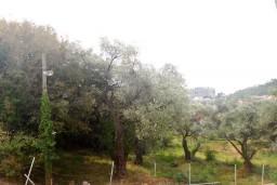 Вид. Бечичи, Черногория, Бечичи : Студия для 2 человек