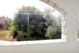 Вид. Будванская ривьера, Черногория, Бечичи : Комната для 2 человек