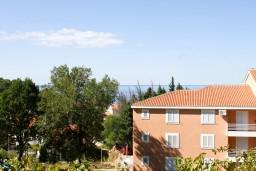 Вид. Будванская ривьера, Черногория, Петровац : Комната для 2-3 человек, с балконом с видом на море