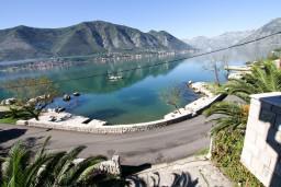 Вид на море. Боко-Которская бухта, Черногория, Доброта : Апартамент с отдельной спальней, на берегу моря