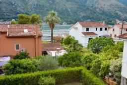 Вид на море. Боко-Которская бухта, Черногория, Доброта : 2-х этажный апартамент с балконом с шикарным видом на залив, 30 метров до моря