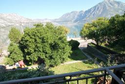 Вид на море. Боко-Которская бухта, Черногория, Костаньица : Апартамент с отдельной спальней, с балконом с шикарным видом на залив, 10 метров до моря