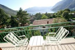 Вид на море. Боко-Которская бухта, Черногория, Рисан : Апартамент с отдельной спальней, с балконом с шикарным видом на море