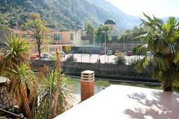 Вид. Боко-Которская бухта, Черногория, Котор : Апартамент в Которе с отдельной спальней в 50 метрах от моря