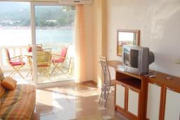 Гостиная. Рафаиловичи, Черногория, Рафаиловичи : Уютный апартамент с отдельной спальней, с балконом с шикарным видом на море