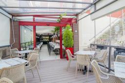Кафе-ресторан. Dimic Ellite 4* в Будве