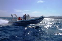 Спортивно-прогулочный катер BWA Evolution 27 : Боко-Которская бухта, Черногория